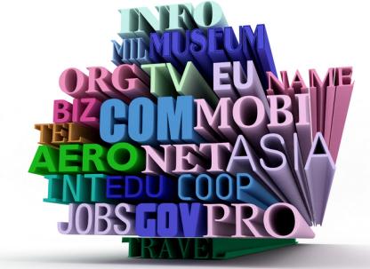 domain-names(1)